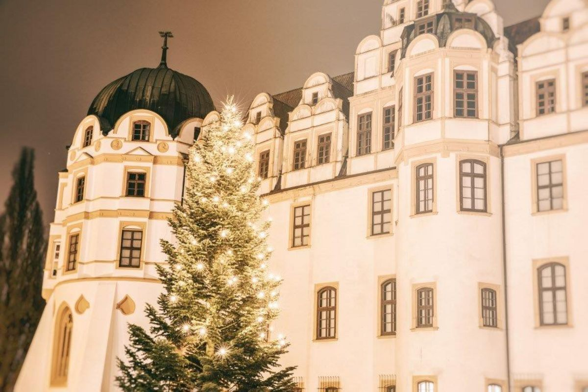 Weihnachtsessen Celle.международная зимняя академия 2 8 декабря 2018г Www Dman De